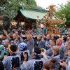 三社祭写真館2018(6) 町内神輿連合渡御その1